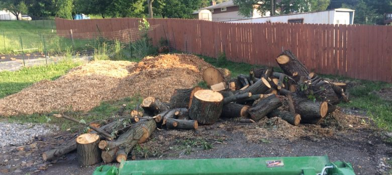 Tag Archives: Duquesne Light. Getting Free Wood Chips And Logs